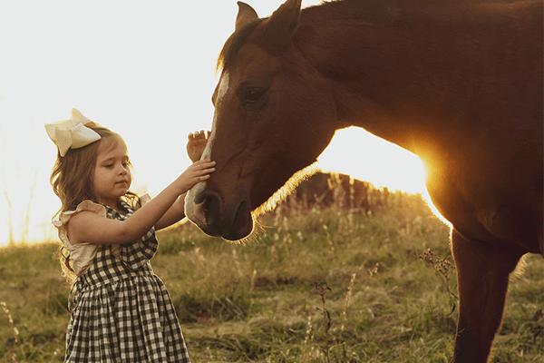 Tenuta del Gallo a cavallo