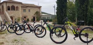 Bici E Bike Tenuta del Gallo