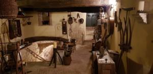 Foto museo di Penna