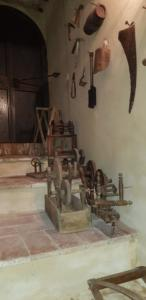 Foto museo di Penna14
