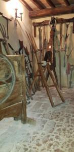 Foto museo di Penna9