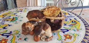 Relais Tenuta del Gallo funghi km0